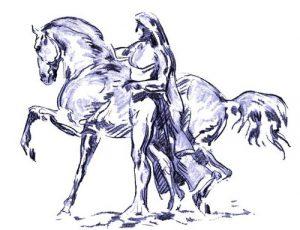 logo isabelle audinet shiatsu equin