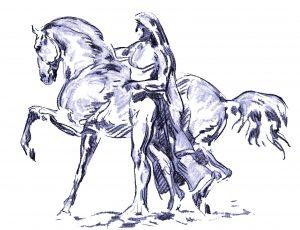 shiatsu pour chevaux